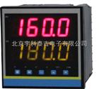 YK-101B液位容量(重量)显示控制仪