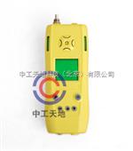 LBT-MJNO/B泵吸式一氧化氮检测仪
