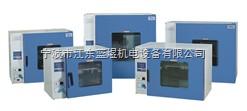 电热鼓风干燥箱,数显干燥箱