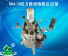 深圳促销GSA-3磁力搅拌微型反应釜