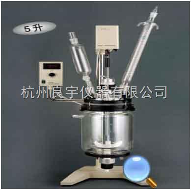 RV-605真空反应器图片