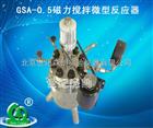 促销GSA-0.5磁力搅拌微型反应器
