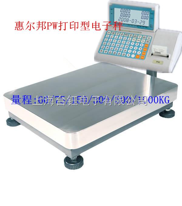 耀华xk3190系列150kg电子秤报价 带打印电子秤--上海耀华xk3190-ds2带