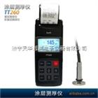 TT260磁性干膜测厚仪