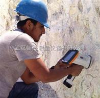 廣西南寧桂林防城港手持式合金分析儀元素分析儀