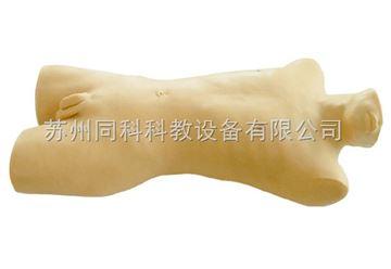TK/816骨髓穿刺訓練模型