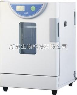 上海一恒精密恒温培养箱BPH-9162