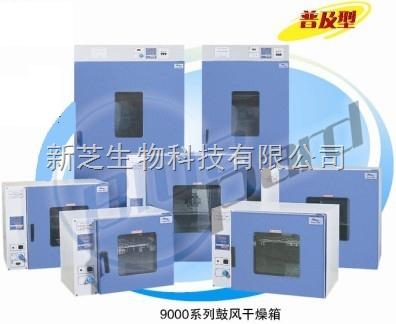 上海一恒鼓风干燥箱DHG-9140A