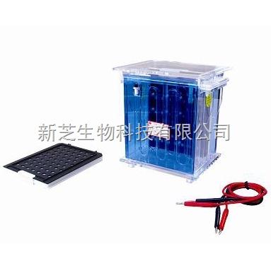北京六一转移电泳槽DYCZ-40A