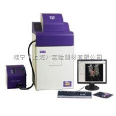 UVP】小动物活体成像/凝胶成像系统iBox Scientia 500/600