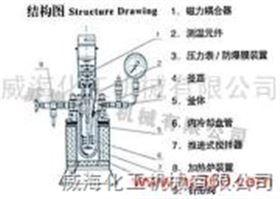 GS型高壓釜