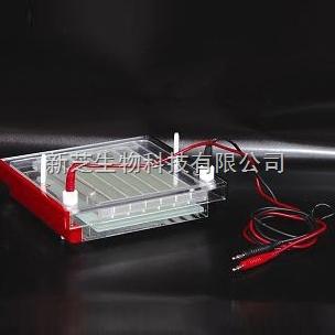 北京六一快速凝胶电泳槽DYCP-44P|电泳槽厂家正品现货