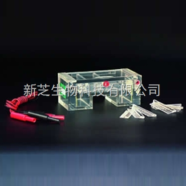 北京六一琼脂糖水平电泳槽DYCP-31C/电泳槽/编号:122-3130现货