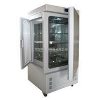 GZY-300光照培养箱 光照恒温箱 种子发芽箱 培育箱