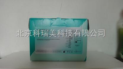 骨保护素试剂盒