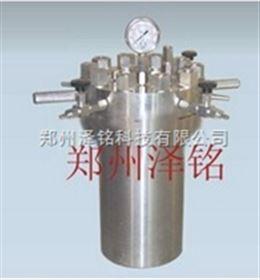 CF-10內蒙古簡易不銹鋼反應釜/10升不銹鋼反應釜*
