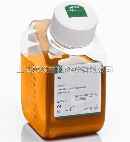 GIBCO 南美胎牛血清,FBS 正品10270-106价格