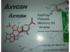 AxyPrep 细菌基因组DNA小量制备试剂盒
