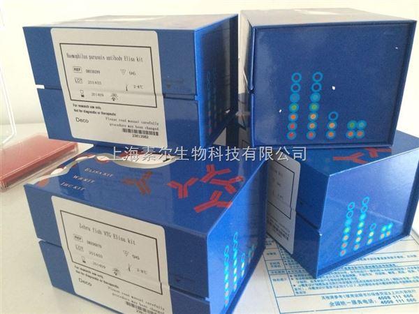 兔III型胶原蛋白(CollagenIII)ELISA试剂盒