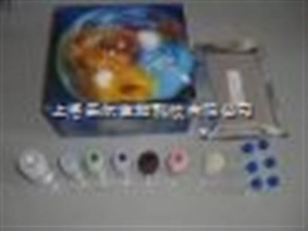 猪口蹄疫抗原ELISA试剂盒