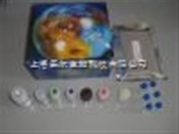 人II型胶原(Collagen Type II)ELISA Kit 说明书