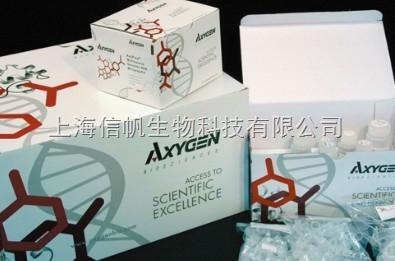 人骨钙素(BGP) ELISA试剂盒,全程提供技术指导和售后服务