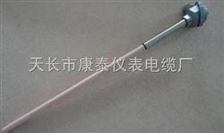 WRQ2-131双支铂铑热电偶
