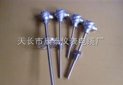 WZP2-640 Pt100双支铂热电阻