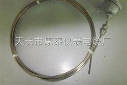 WZPK-236铠装热电阻价格