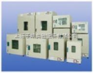 上海精宏DHG型电热恒温干燥箱