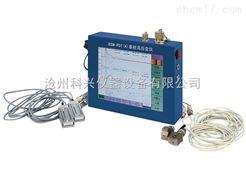 RSM-PDT(A)型基桩高应变检测仪