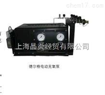 Masterline 电动充氧泵