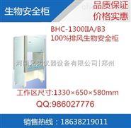 苏净生物安全柜|BHC-1300II A/B2 特价促销