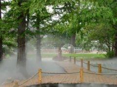 深圳园林冷雾景观