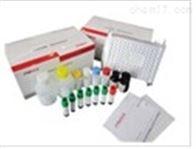 小鼠DNA激活蛋白激酶催化亚基肽(PRKDC)检测试剂盒