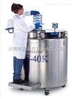 LABS-20K美国泰来华顿进口液氮罐
