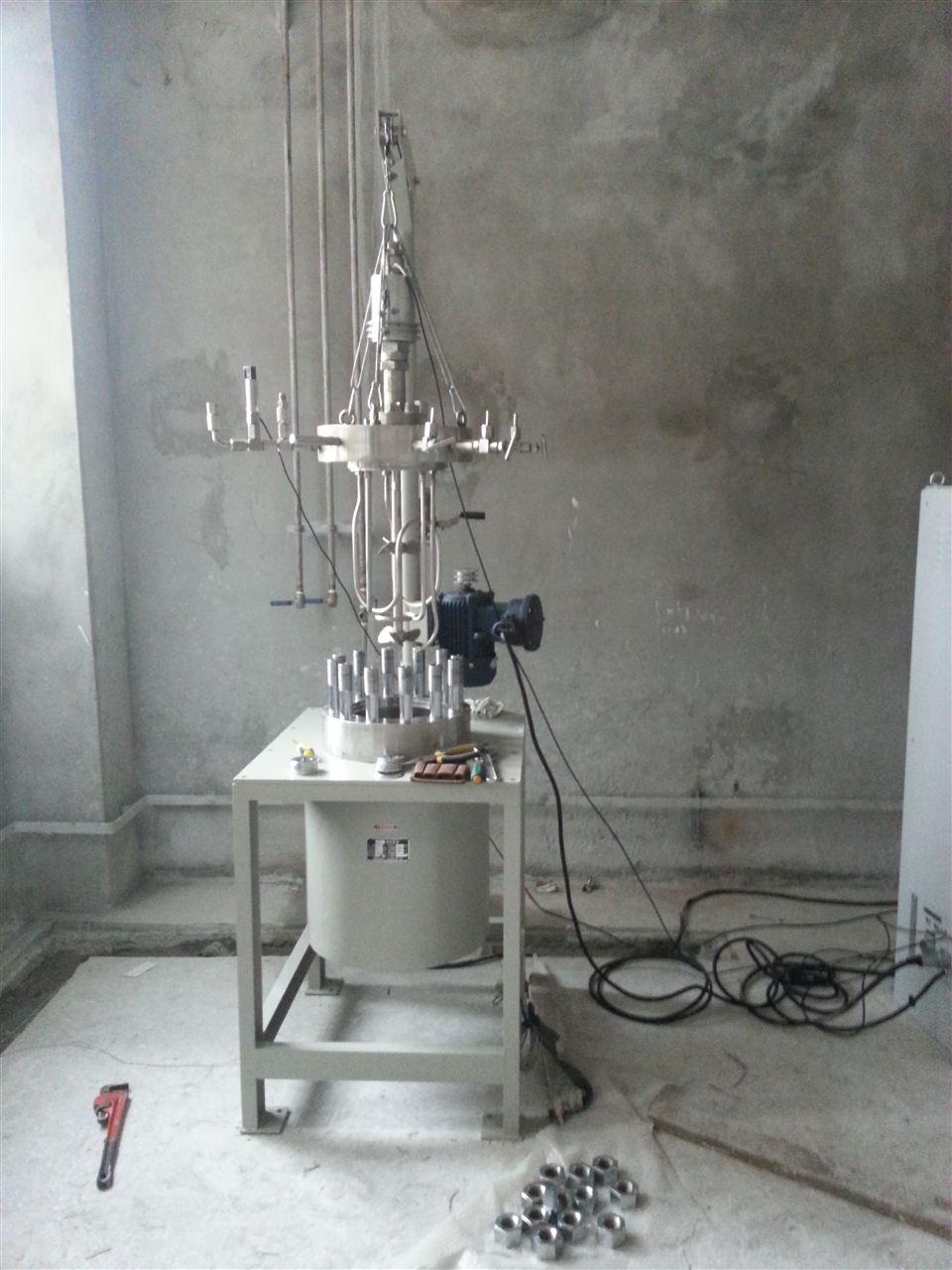 山西亞寶藥業集團20L加氫反應釜
