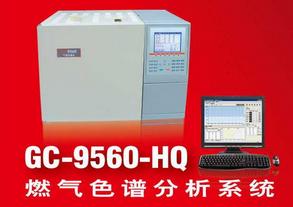 液化气分析色谱仪