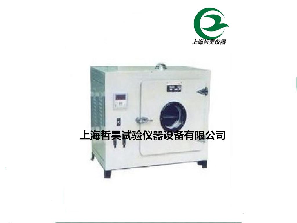 101a-2电热鼓风干燥箱