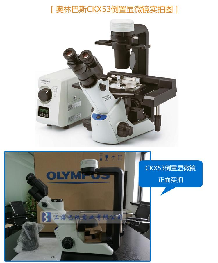 【产品名称】OLYMPUS奥林巴斯CKX53倒置显微镜 日本原装显微镜价格 【产品型号】CKX53  【奥林巴斯CKX53倒置显微镜产品简介】: CKX53实验室常规倒置显微镜采用先进的iPC整合相衬系统,通过一个万能型相衬环板支持4X,10X,20X 和40X相衬物镜观察活细胞图像,使常规细胞观察更加快捷,简单方便。另外还有与2倍物镜配合使用的专用孔径光阑CKX3-SLPAS,以及反相相称(IVC)技术等极大地提高了观察反差。方便操作各种类型细胞的培养容器,紧凑而稳固的设计节省操作空间,非常适合在细胞培