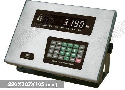 XK3190—DS3