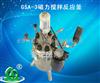 GSA-3世纪森朗磁力搅拌反应釜
