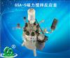 北京森朗GSA-5磁力搅拌反应釜