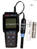 320D-01A便携式溶氧仪实验室溶解氧测定仪、RS232或USB、0.00- 90.0 mg/L、0.0-600%
