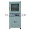 DZF-6090Z/6210ZDZF-6090Z/6210Z立式真空干燥箱
