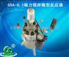 GSA-0.1磁力搅拌微型反应器厂家直销
