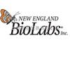 M0202VNEB内切酶 NEB连接酶 NEB聚合酶 M0202V T4 DNA Ligase10000 uni