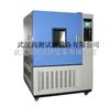 SC/GDW高低温湿热试验箱,高低温机