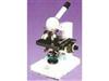 2XC3生物显微镜|显微镜价格