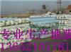 天津供应地膜, 天津树木保温用地膜,天津修高速用地膜